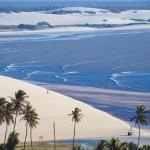 GOL con nuevo vuelo entre noreste brasilero y Buenos Aires
