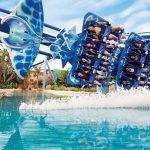 SeaWorld Parks & Entertainment anuncia nuevos paquetes y boletos para los parques de Florida